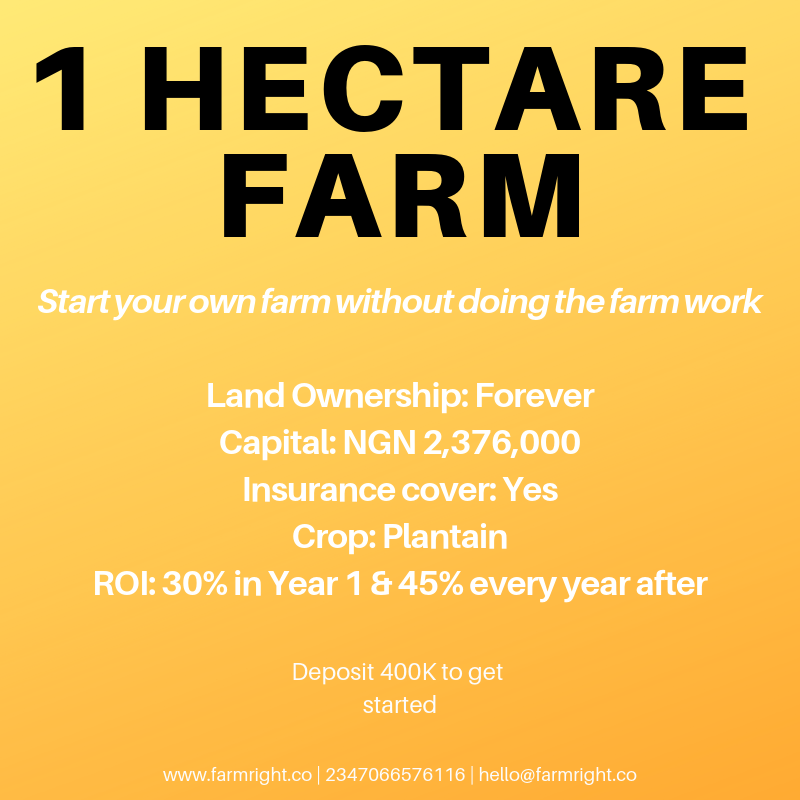1 hectare farm land on Farm right