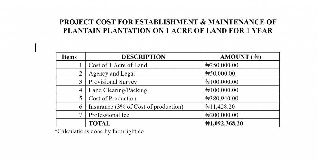 Cost analysis for plantain plantation