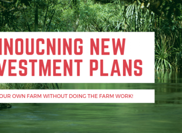 New plans on farm right